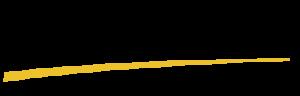 Logo of Solidaridad